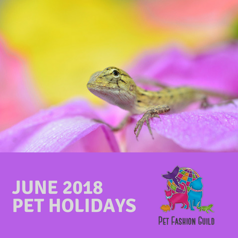 2018 June Pet Holidays