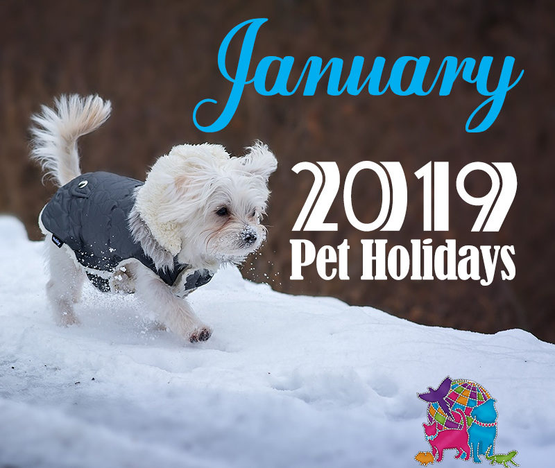 January 2019 Pet Holidays