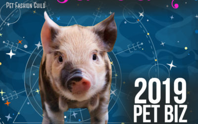 January 2019 Pet Business Astrology Overview