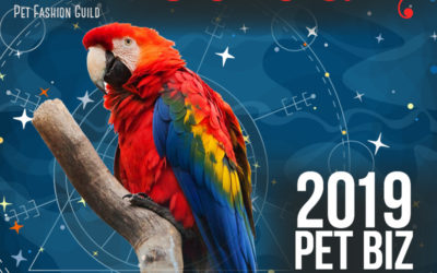 February 2019 Pet Business Astrology Overview