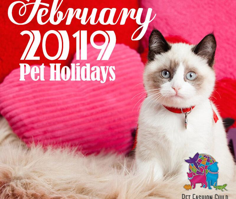 February 2019 Pet Holidays