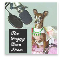 Doggy Diva Show: Laurren Darr and Zachary Tinkle Interview