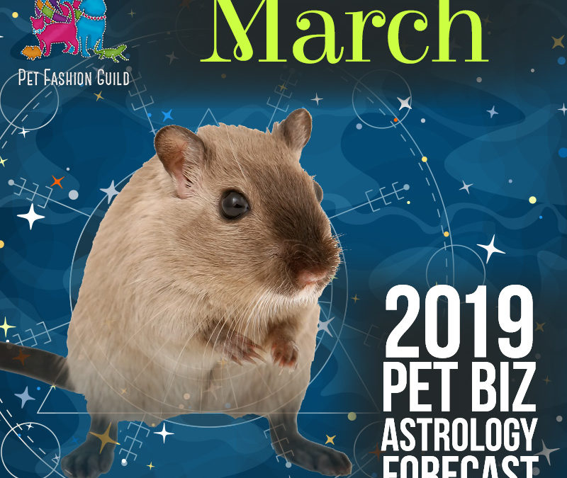 March 2019 Pet Business Astrology Overview