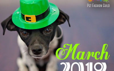 March 2019 Pet Holidays