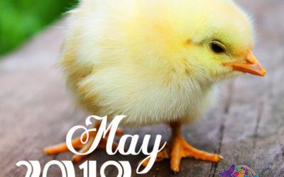May 2019 Pet Holidays