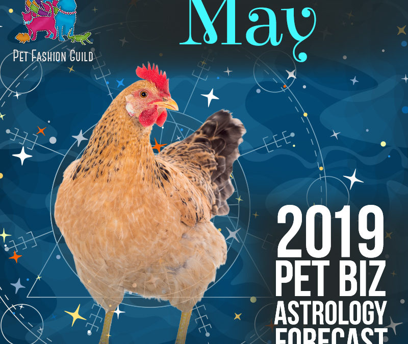May 2019 Pet Business Astrology Overview