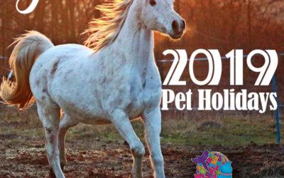 June 2019 Pet Holidays