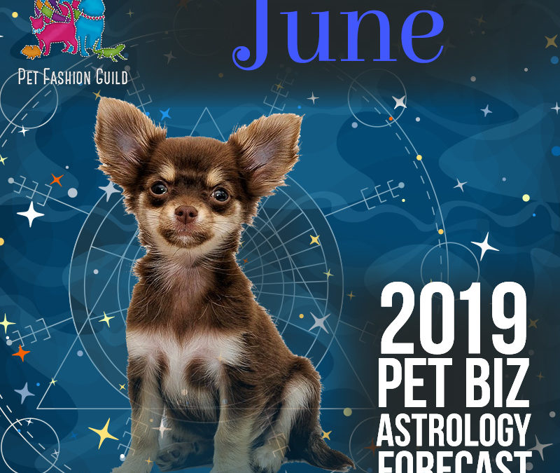 June 2019 Pet Business Astrology Overview
