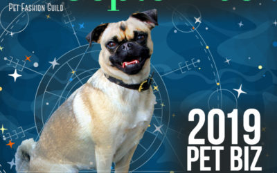 September 2019 Pet Business Astrology Overview