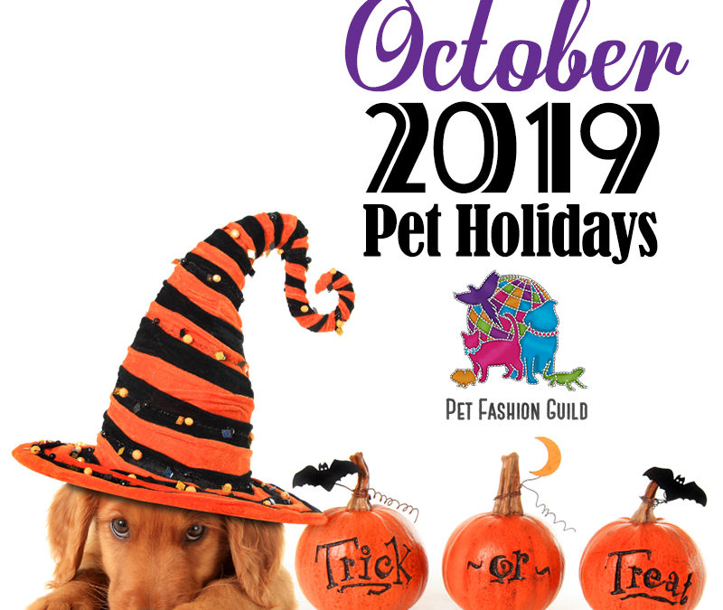 October 2019 Pet Holidays