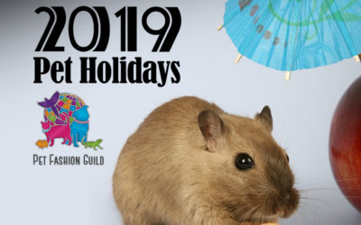 November 2019 Pet Holidays