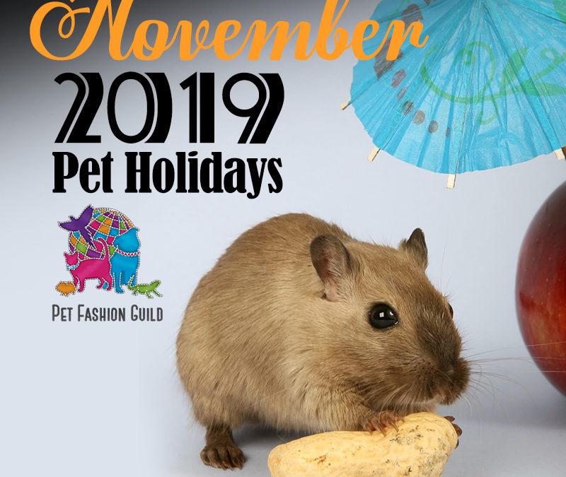 November 2019 Pet Holidays