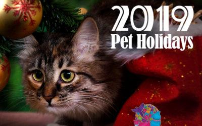 December 2019 Pet Holidays