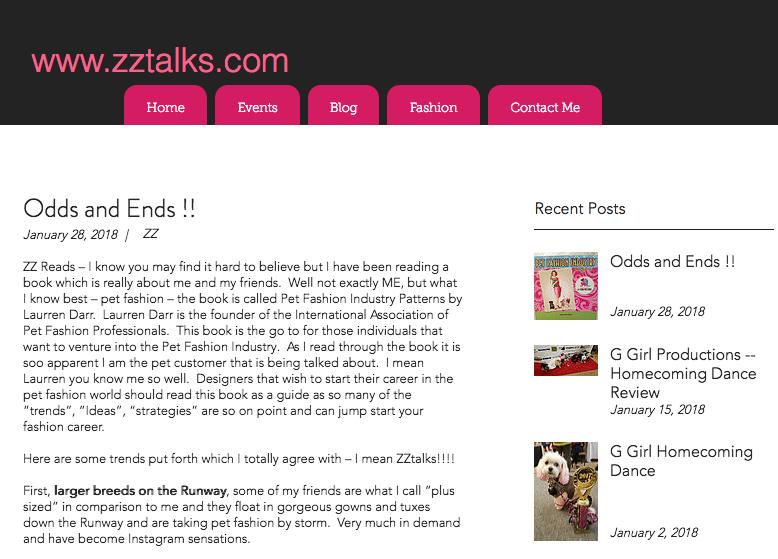 ZZ Talks Review Pet Fashion Industry Patterns